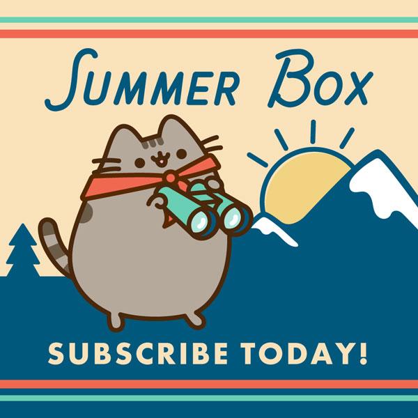 summer 2020 pusheen box