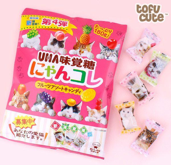 tropical fruit kawaii candy cats