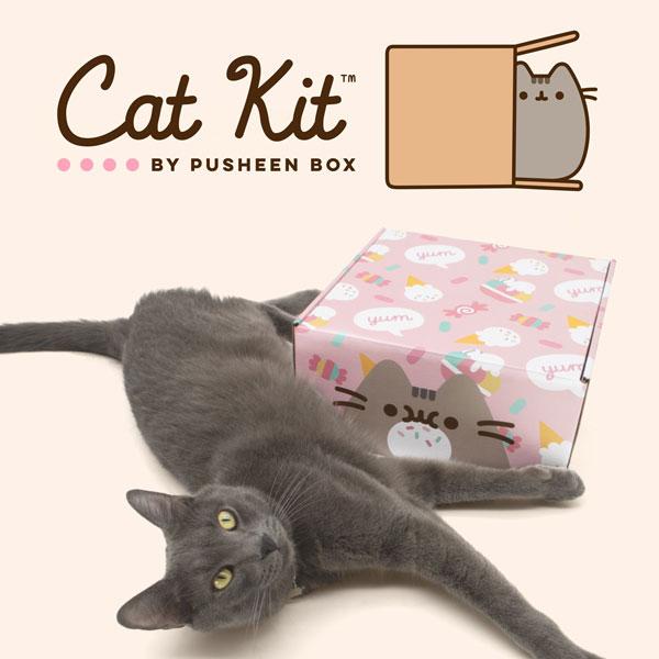 Cat Kit by Pusheen Box
