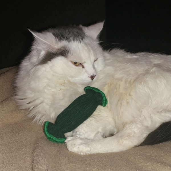 tickle pickle cat toy