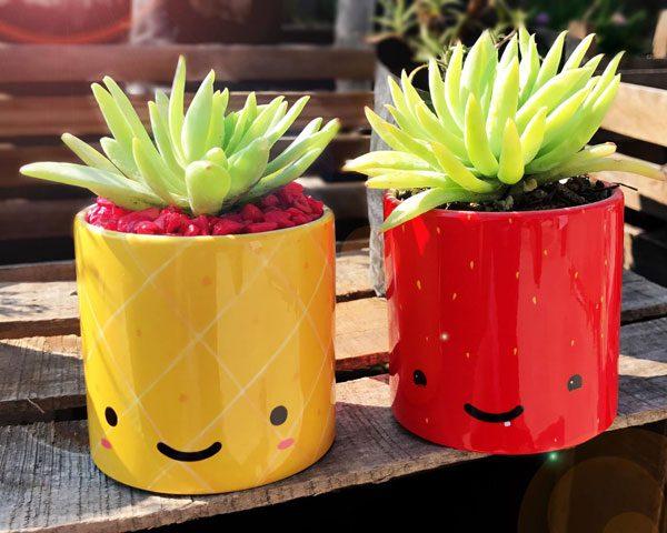 kawaii strawberry planter pineapple