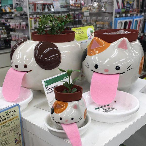 peropon planters