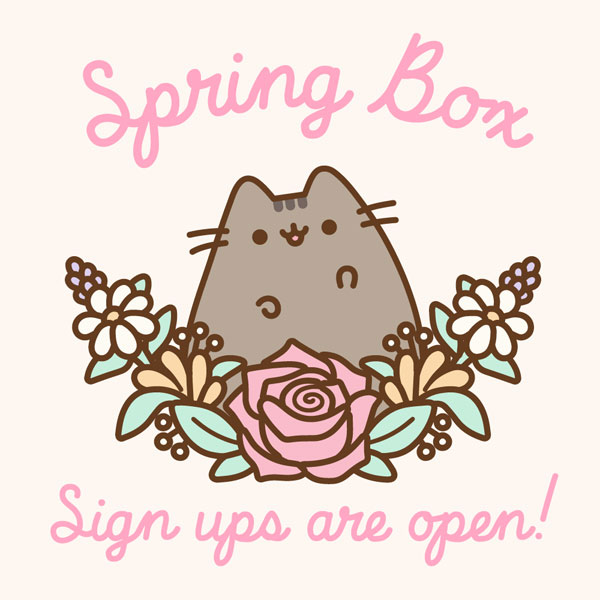 Pusheen Box subscription box
