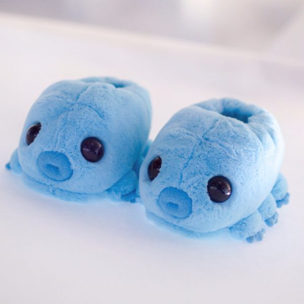 water bear kawaii slippers