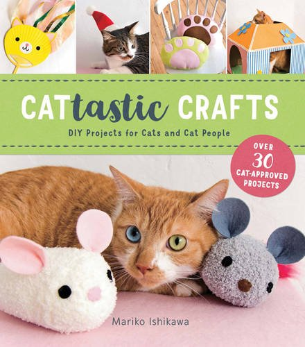 Cattastic Crafts book
