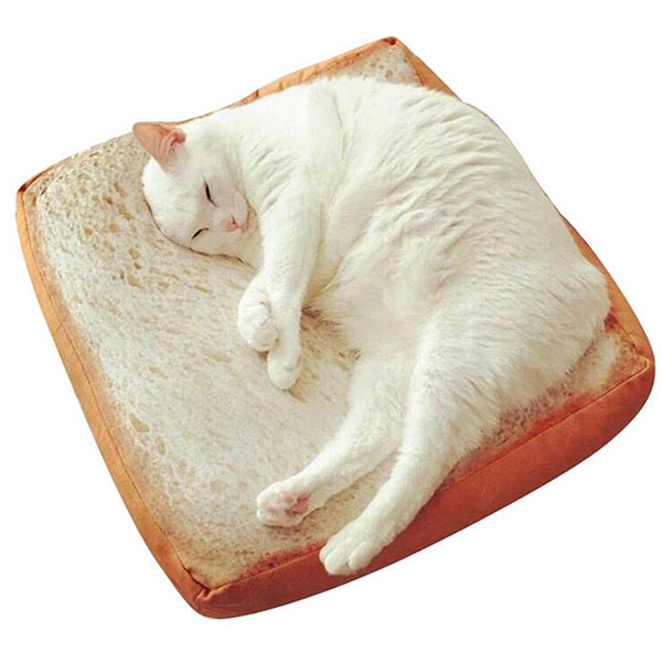 cute bread cat bed