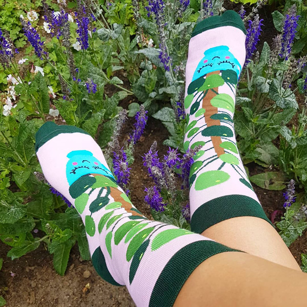 kawaii plant socks