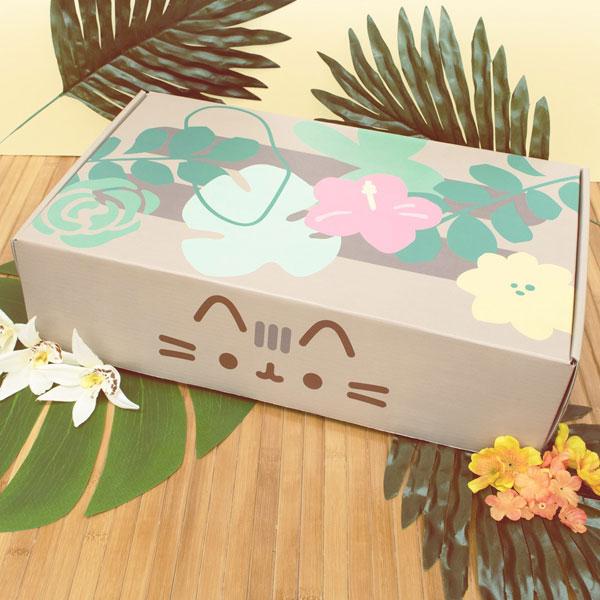 Pusheen Box kawaii subscription boxes