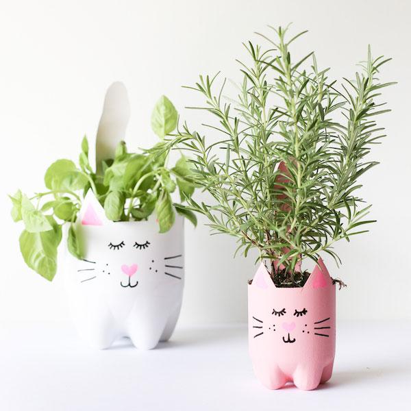DIY cat planters