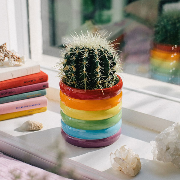 rainbow planter