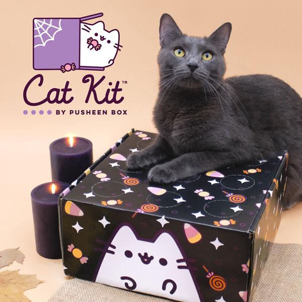 pusheen cat kit