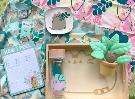 Spring 2020 Pusheen Box Review