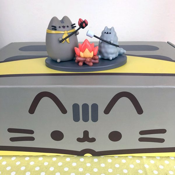 Pusheen Box summer 2020
