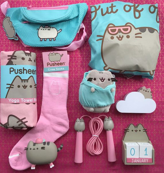Spring Pusheen Box review