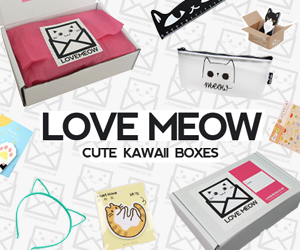 Love Meow - cute kawaii boxes