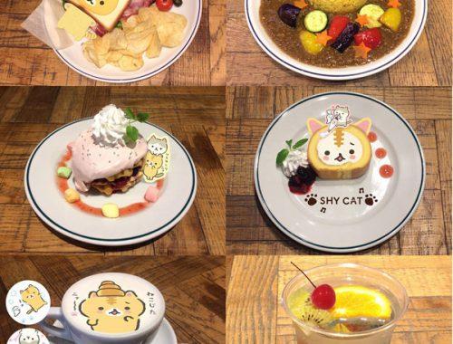 san-x corocorocoronya cafe japan