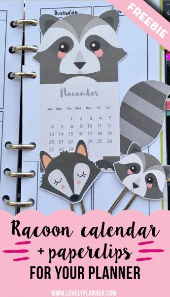 Raccoon calendar divider+ paperclips