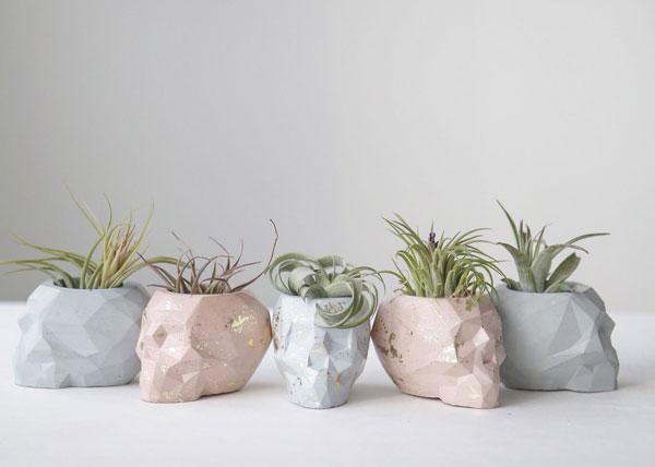 skull planters