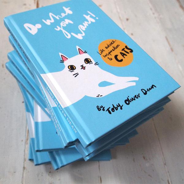 kawaii cat book