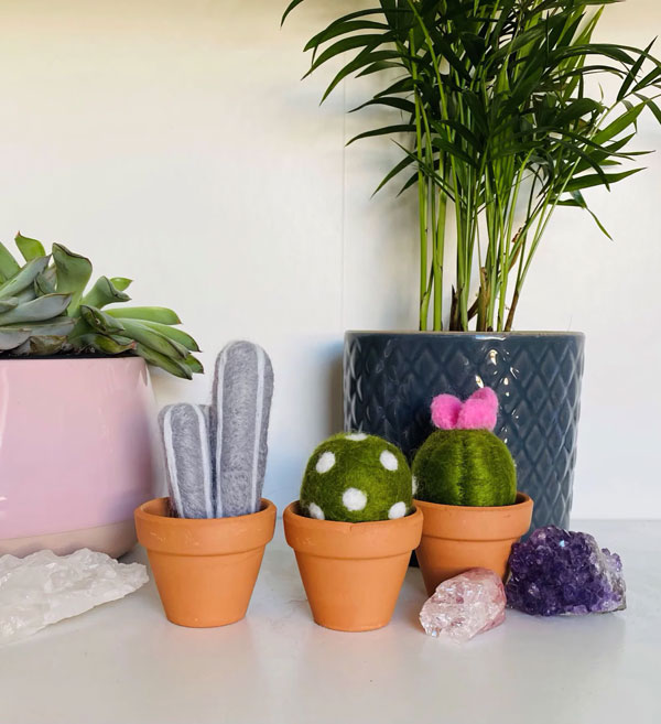 cactus needle felting kit
