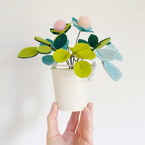 DIY felt plant kit