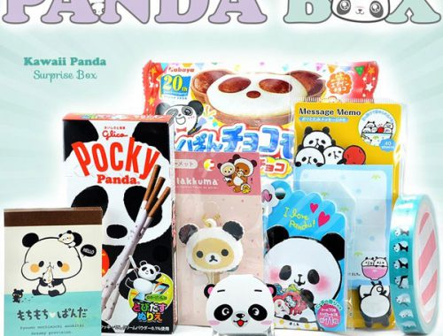 Kawaii Panda surprise box