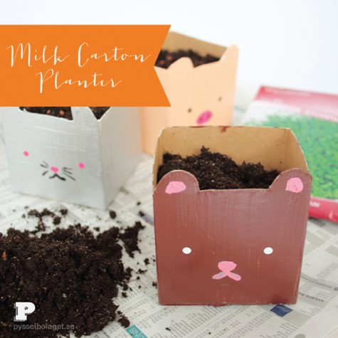 kawaii-planter-diy-2