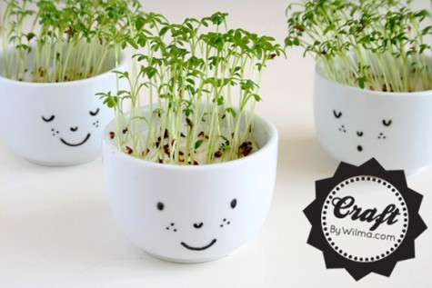 kawaii-planter-diy-3