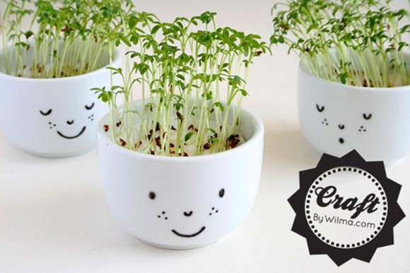 kawaii-planter-diy-3