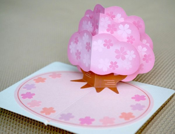 sakura pop-up card