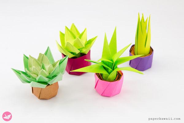 DIY origami succulents cactus