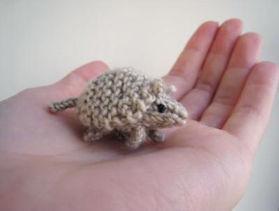 tiny armadillo