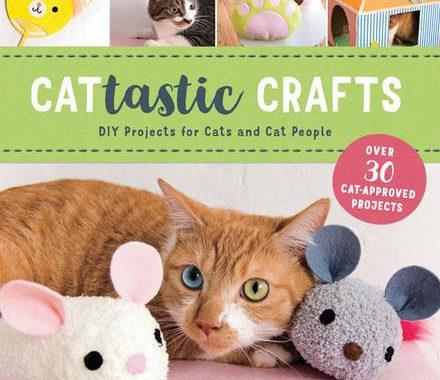 Cattastic Crafts book